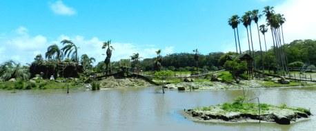 El lago con una isla luego de transformación